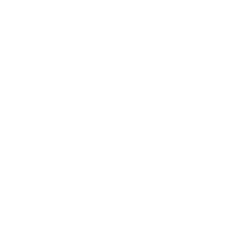 2017: Inaugural Inductee into the Legal 500 Hall of Fame